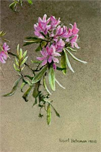 "Robert Bateman Limited Edition Print: ""Rhododendron"""