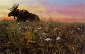 "John Seerey-Lester Limited Edition Print: ""Daybreak Moose"""