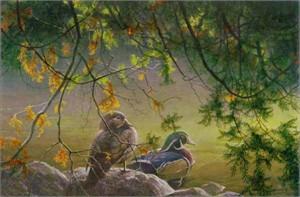 "Robert Bateman Limited Edition Print:""On The Pond - Wood Ducks """