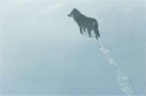 "Robert Bateman Handsigned & Numbered Limited Edition Print:"" New Territory-Black Wolf"""
