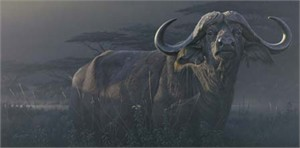 """Daniel Smith Handsigned & Numbered Limited Edition Print:""""Undaunted Danger"""""""