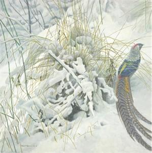 "Robert Bateman Handsigned & Numbered Limited Edition Print:"" Lady Amherst Pheasant"""