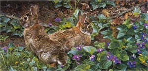 """Carl Brenders Handsigned & Numbered Limited Edition Print:""""Violet Trails and Cottontails """""""