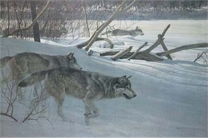 "Robert  Bateman Handsigned & Numbered Limited Edition Canvas:""Wolfpack In Moonlight"""