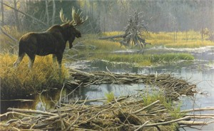 "Robert Bateman Anniversary Limited Edition Giclee on Canvas:""Autumn Overture """