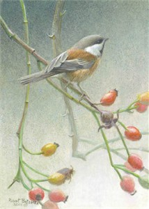 "Robert Bateman Handsigned and Numbered Limted Edition Print:""Chickadee and Rose Hips"""