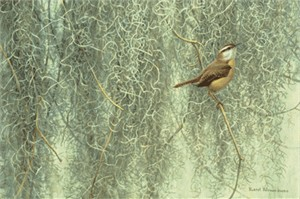 "Robert Bateman Handsigned & Numbered Limited Edition Print:""Song of the South - Carolina Wren"""