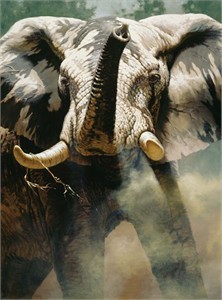 "Guy Coheleach Handsigned & Numbered Limited Edition Textured Canvas Giclee:""The Last Waterhole"""