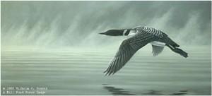 "Wilhelm Goebel Limited Edition Paper Print:""Misty Flight - Loon"""