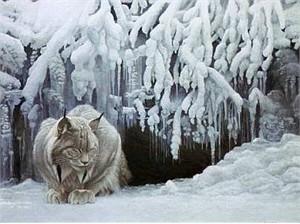 "Robert Bateman  Limited Edition Giclee on Canvas:""Dozing Lynx"""