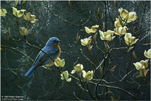 "Robert Bateman Handsigned and Numbered Limited Edition Orginal Lithograph on Paper Print:""Bluebird And Blossoms - Prestige"""