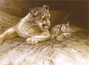"Robert Bateman Limited Edition Lithograph:""Cougar And Kit"""