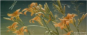 "Robert Bateman Limited Edition Lithograph:""Daylilies And Dragonflies"""
