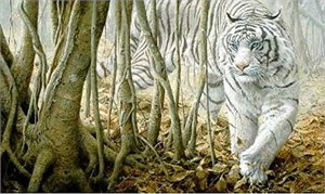 "John Seerey-Lester Handsigned and Numbered Renaissance Edition Giclée Canvas:""Softly, Softly - White Tiger"""