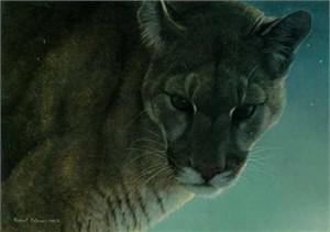"Robert Bateman Limited Edition Print:""Starlight - Cougar"""