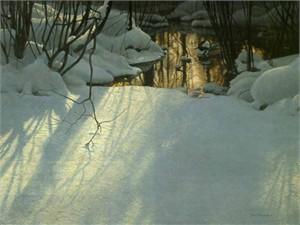 "Robert Bateman Limited Edition Print:""Winter Pond Merganser"""