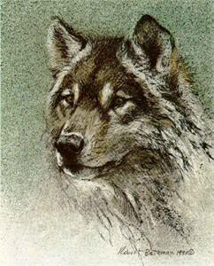 "Robert Bateman Limited Edition Print:""Wolf Set - Predator Portfolio"""