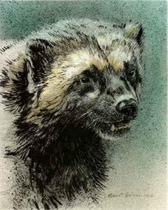 """Robert Bateman Limited Edition Print:""""Wolverine Predator Portfolio"""""""