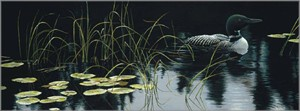 "Robert Bateman Hand Signed And Numbered Limited Edition Renaissance Collection Canvas Giclee:"" Lily Pads and Loon """