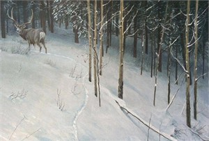"Robert Bateman Hand Signed and Numbered Limited Edition Canvas Giclee:""Forest Trail - Mule Deer"""