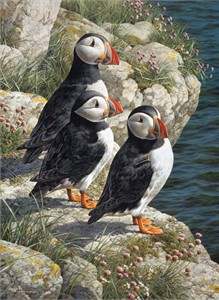 """Carl Brenders  Hand Signed and Numbered Limited Edition Canvas Giclee:""""Fishermans Wharf - Puffins"""""""