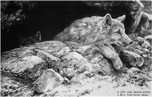 "John Seerey – Lester Limited Edition Print:""Arctic Wolf Pups"""