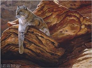 "John Seerey – Lester Limited Edition Print:""Cliff Hanger-Bobcat"""