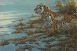"Robert Bateman Hand Signed and Numbered Limited Edition Canvas Giclee:""Siberian Clearing - Mother and Cub"""
