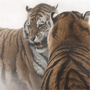 "Robert Bateman Hand Signed and Numbered Limited Edition Canvas Giclee:""Sparring Siberians"""