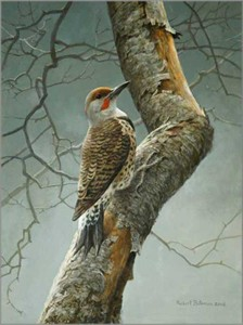 "Robert Bateman Hand Signed and Numbered Limited Edition Canvas Giclee:""Flicker on Apple Tree"""