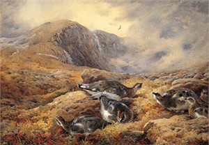 """Archibald Thorburn Hand Numbered Limited Edition Print on Paper: """"Danger Aloft"""""""