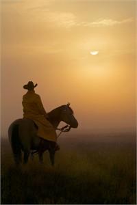 "Robert Dawson Fine Art Open Edition Canvas Giclee: ""A New Day"""