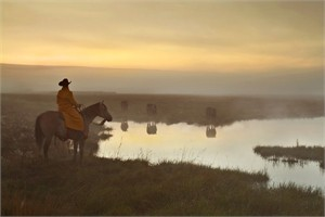 "Robert Dawson Fine Art Open Edition Canvas Giclee: ""The Guardian"""