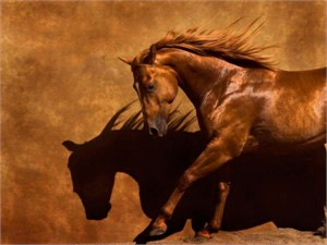 "Robert Dawson Fine Art Open Edition Canvas Giclee: ""Adobe Dancer"""
