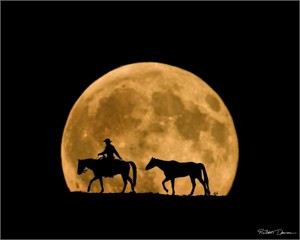 "Robert Dawson Fine Art Open Edition Canvas Giclee: ""Full Moon Ride"""