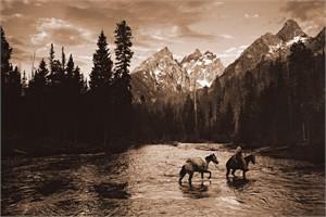 "Robert Dawson Fine Art Open Edition Canvas Giclee: ""River Crossing I"""