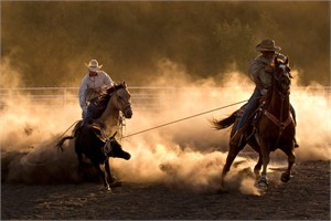 "Robert Dawson Fine Art Open Edition Canvas Giclee: ""Roping on the Ranch"""