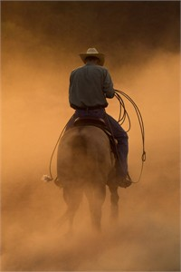 "Robert Dawson Fine Art Open Edition Canvas Giclee: ""Teo on the Ranch"""