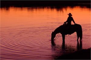 """Robert Dawson Fine Art Open Edition Canvas Giclee: """"Texas Sunset"""""""
