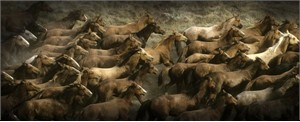 "Norm Clasen Hand Signed and Numbered Canvas Giclee: ""Long Herd"""