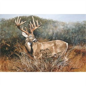 "Ragan Gennusa Hand Signed and Numbered Limited Edition Giclee on Paper and Canvas:""Texas Heritage (Muy Grande White-tailed Deer )"""