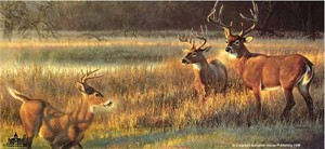 """Nancy Glazier Handsigned & Numbered Limited Edition Giclee on Canvas :""""Shadow Tales"""""""