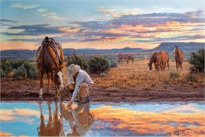 """Tim Cox Hand Signed and Numbered Limited Edition Canvas: """"Reflections of a Passing Day"""""""