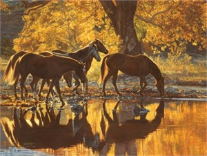 "Tim Cox Limited Edition Artist Proof Print:""Autumn's Amber Glow"""