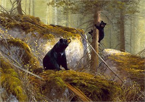 "Michael Coleman Hand Signed & Numbered Limited Edition Giclee on Paper:""The Adventurer - Black Bears"""