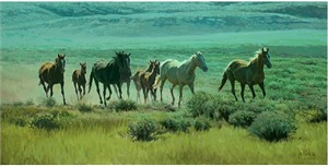 """Bill Owen Hand Numbered Limited Edition Giclee on Canvas: """"His Band of Mares"""""""