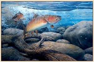 "Fred W.Thomas Handsigned & Numbered Limited Edition Print: ""Cutthroat Trout"""