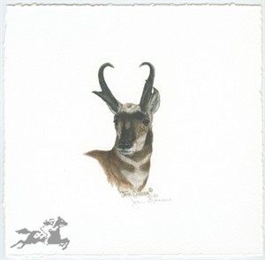 "Jean Gasser Giclee on Paper with Deckled Edges :""ANTELOPE VIGNETTE"""