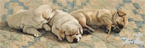 "Adeline Halverson Limited Editions :""NAP TIME"""