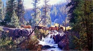 "Jim Rey Artist Handsigned Open Edition Canvas Transfer:""Prairie Primrose"""